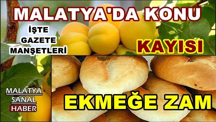Malatya'da Konu ekmek ve kayısı