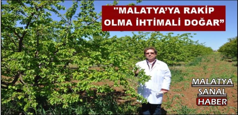 """MALATYA'YA RAKİP OLMA İHTİMALİ DOĞAR"""""""