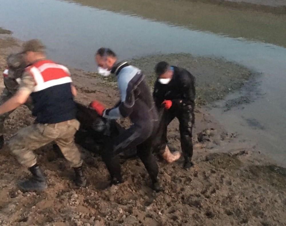 Su yüzeyinde kimliği belirsiz ceset bulundu