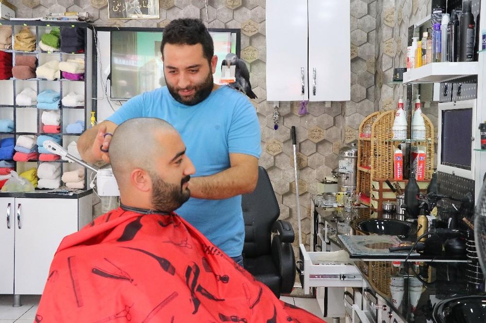 Malatya'da Papağan berberde çıraklık yapıyor