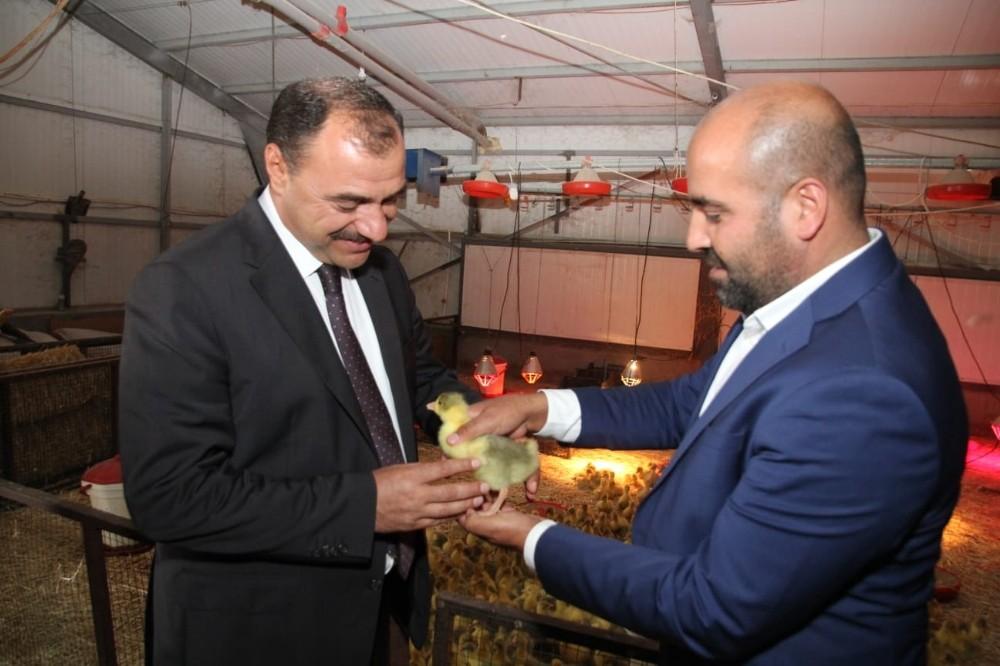 Vali Kaldırım, Türkiye'nin en büyük kaz çiftliğini inceledi
