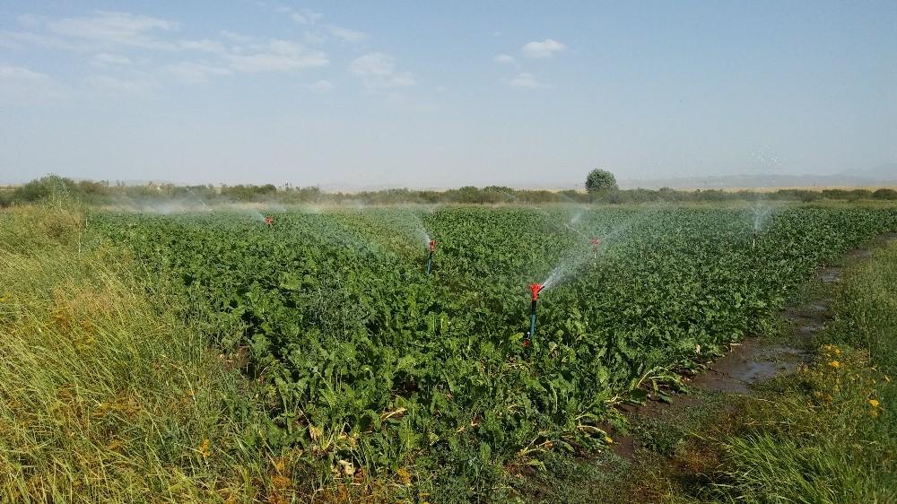 2019 Yılı bireysel sulama hibe hakkı kazanan çiftçiler açıklandı