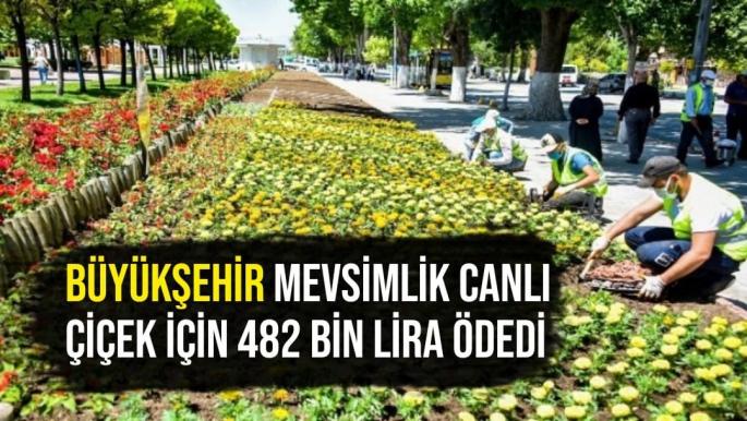 Büyükşehir mevsimlik canlı çiçek için 482 bin lira ödedi