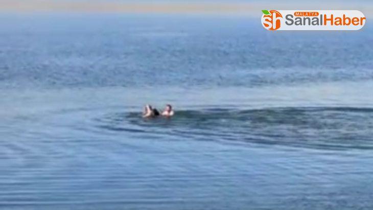 Boğulmak üzere olan şahsı Feribot kaptanı kurtardı