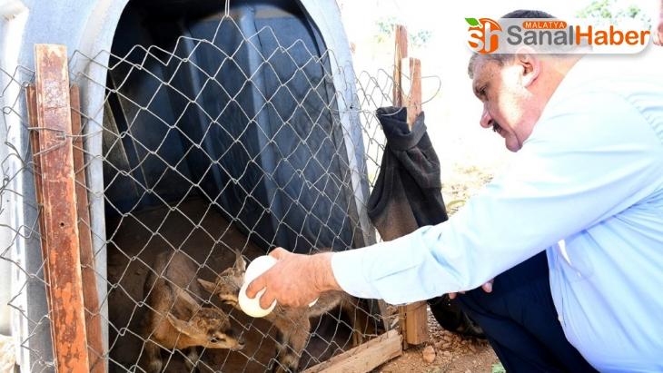 Gürkan'dan yaban hayatı gözlem merkezine ziyaret