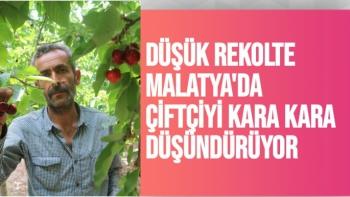 Düşük rekolte Malatya'da çiftçiyi kara kara düşündürüyor
