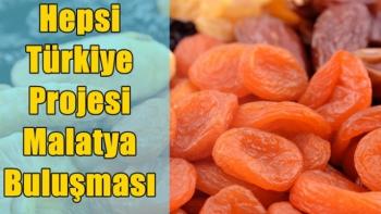 Hepsi Türkiye Projesi Malatya Buluşması