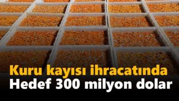 Kuru kayısı ihracatında hedef 300 milyon dolar