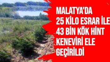 Malatya´da 25 kilo esrar ile 43 bin kök hint keneviri ele geçirildi