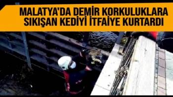 Malatya'da Demir korkuluklara sıkışan kediyi itfaiye kurtardı