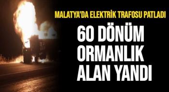 Malatya'da Elektrik trafosu patladı, 60 dönüm ormanlık alan yandı