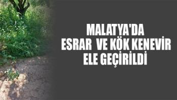 Malatya'da  esrar ve kök kenevir ele geçirildi