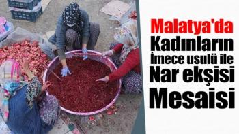 Malatya'da Kadınların imece usulü ile nar ekşisi mesaisi