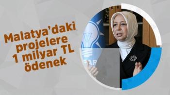 Malatya'daki projelere 1 milyar TL ödenek