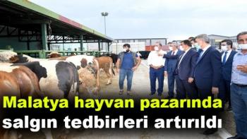 Malatya hayvan pazarında salgın tedbirleri artırıldı