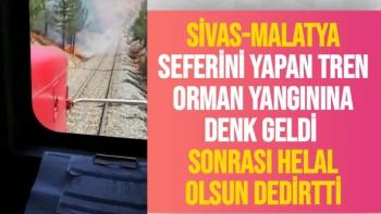 Sivas-Malatya seferini yapan tren orman yangınına denk geldi
