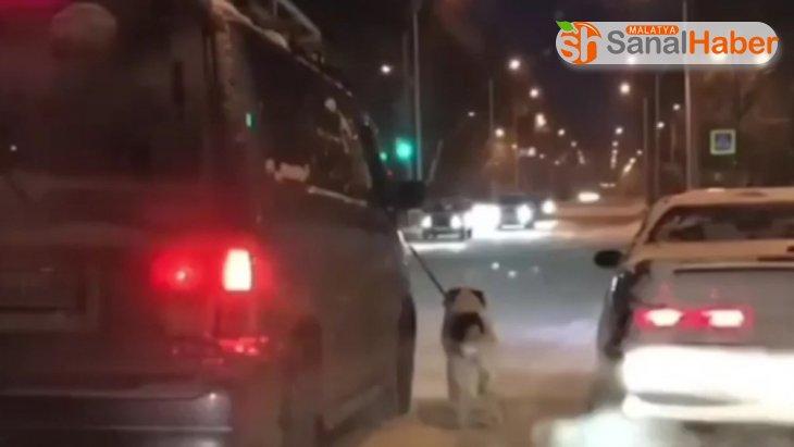 Komşusuna kızdı, köpeğini buz tutan yolda yürüttü