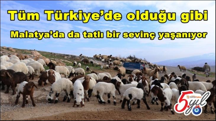 Tüm Türkiye'de olduğu gibi Malatya'da da tatlı bir sevinç yaşanıyor