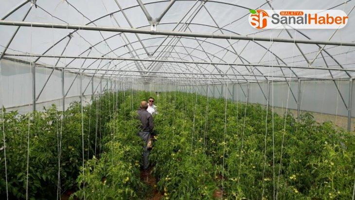 Örtüaltı tarımcılıkta  en düşük illerden biri Malatya