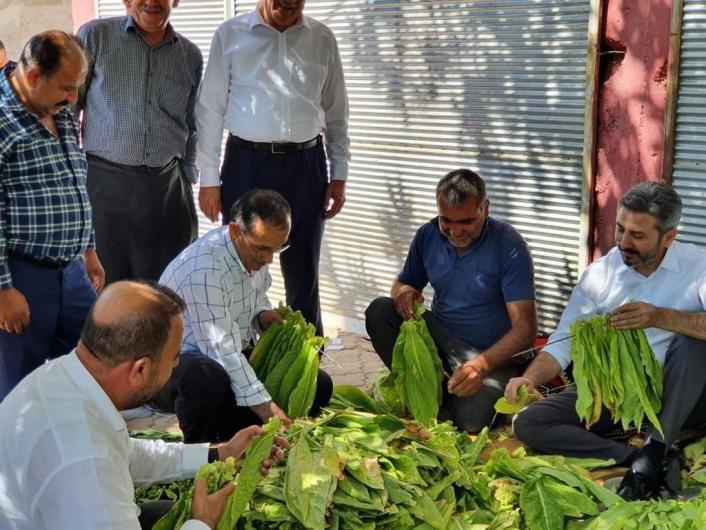 AK Parti heyeti Kahta´nın merkez ve köylerini gezdi