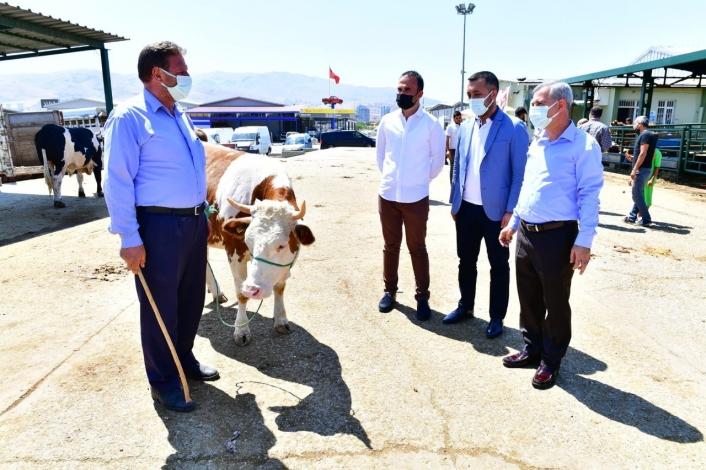 Başkan Çınar, canlı hayvan pazarında inceleme yaptı