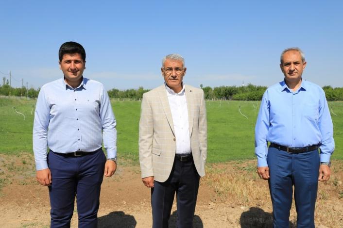Battalgazi Belediyesi `rulo çim üretim tesisi´ kurdu