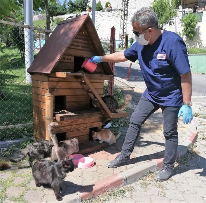 Bu merkezde 4 bin sokak hayvanı korunup tedavi edildi