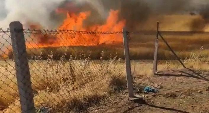 Buğday tarlasında çıkan yangını köylüler söndürdü