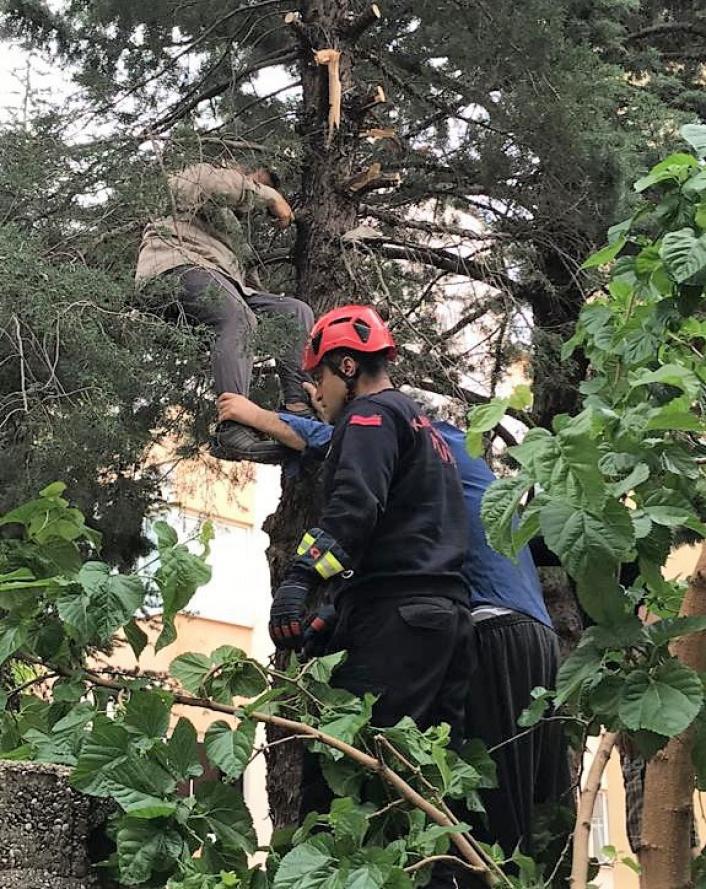 Çıktığı ağaçta fenalaşan adamı itfaiye kurtardı