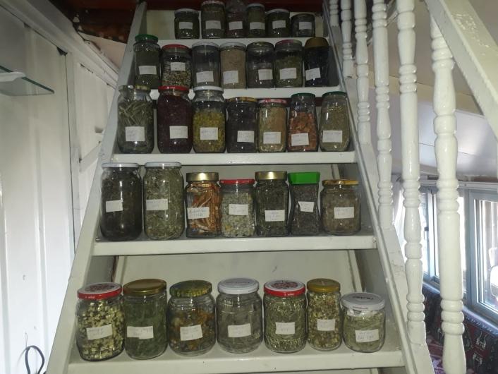 Dağ evini tıbbi ve aromatik bitkiler müzesine dönüştürdü