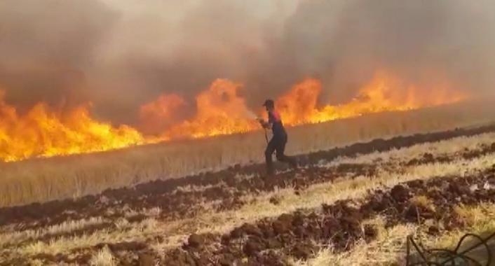 Ekili alan yangınları arttı, itfaiye müdürü uyardı