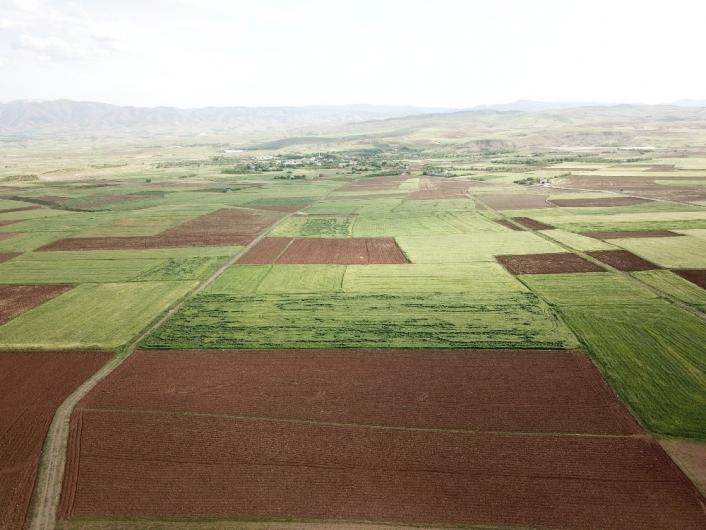 Elazığ´da arazi toplulaştırma çalışmaları sürüyor