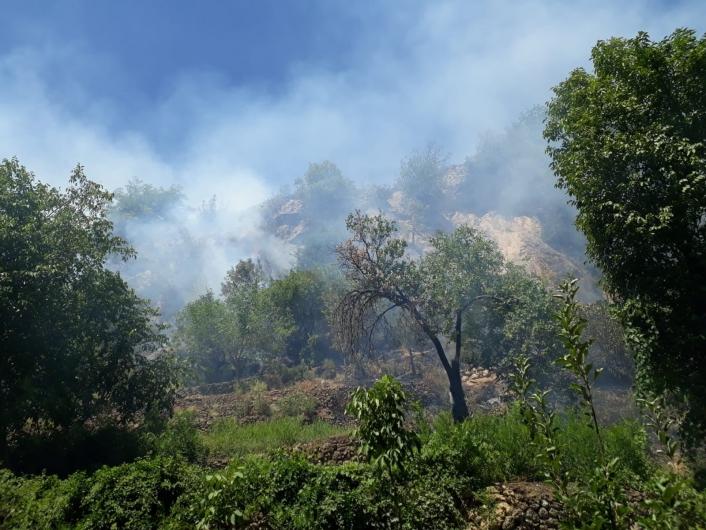Elazığ´da çıkan orman yangını kısa sürede söndürüldü