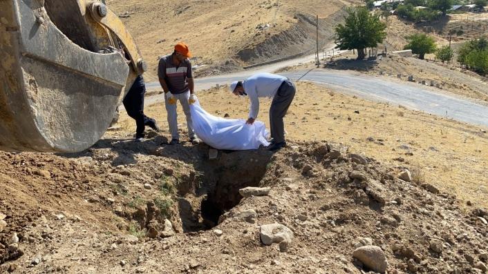 Elazığ´da etrafa saçılan kemikler toplanıp kefenlendikten sonra yeniden defnedildi