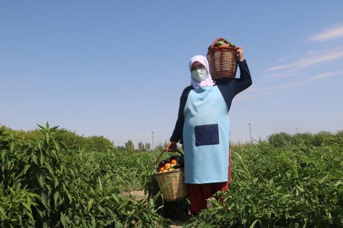 Kadınlar deprem ve Covid-19 stresini hasat yaparak attı