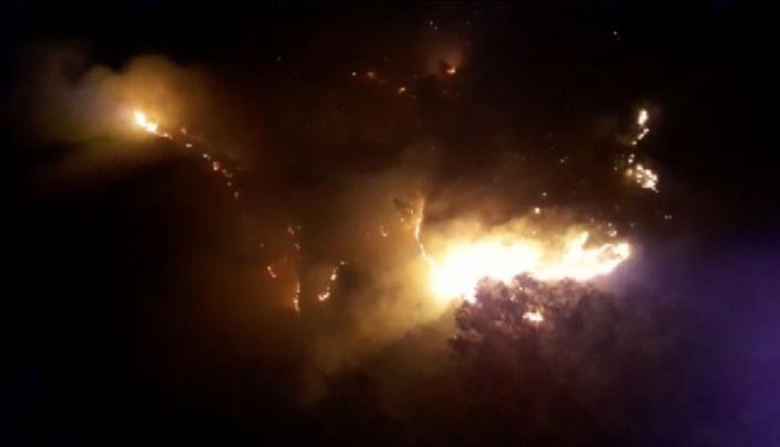 Kahramanmaraş´ta orman yangını