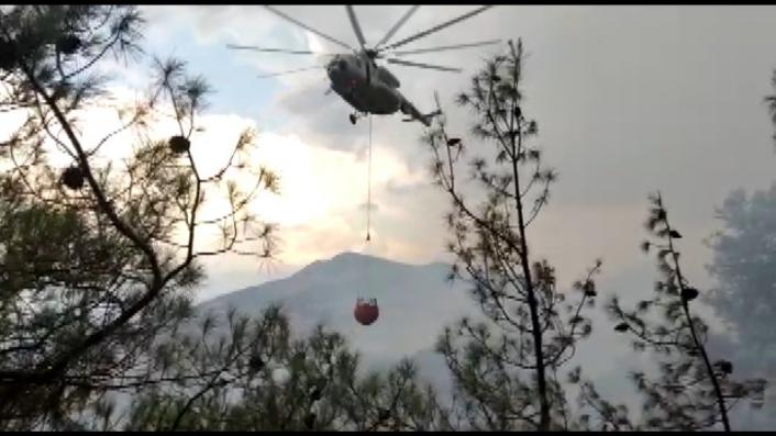 Kahramanmaraş´ta orman yangınında 3 hektar alan zarar gördü