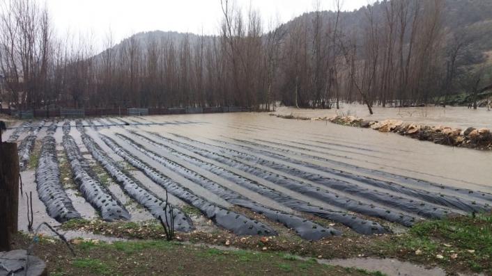 Kahramanmaraş´ta tarım arazileri sular altında kaldı