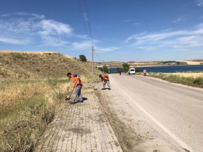 Kaldırım ve yollardaki yabani otlar temizleniyor