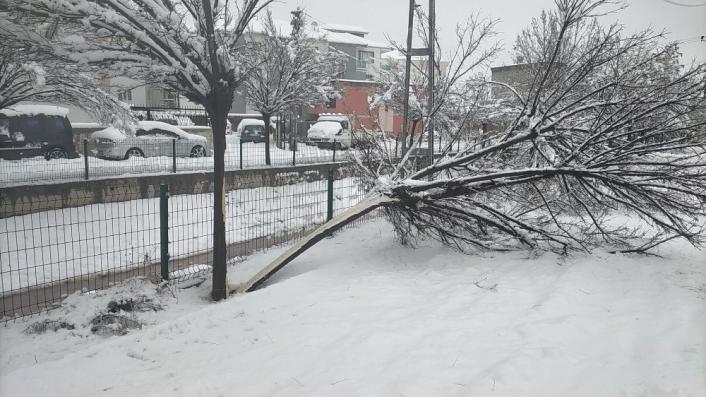 Kar yağışı elektrik direklerini devirdi