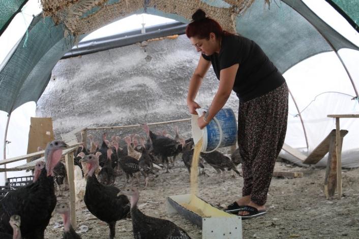Kendi çiftliğini kurdu, bir yılda 200 bin adet tavuk ve hindi satışı yaptı