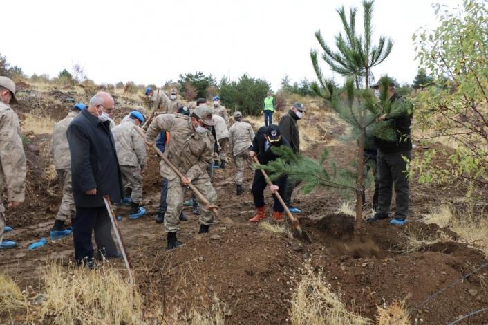 Mehmetçik, şehit ve depremde hayatını kaybedenler için bin fidan dikti