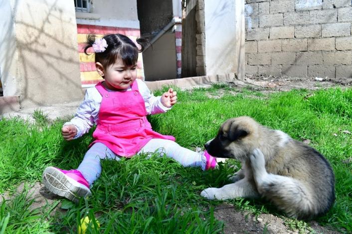 Minik Nisa´ya köpek hediyesi