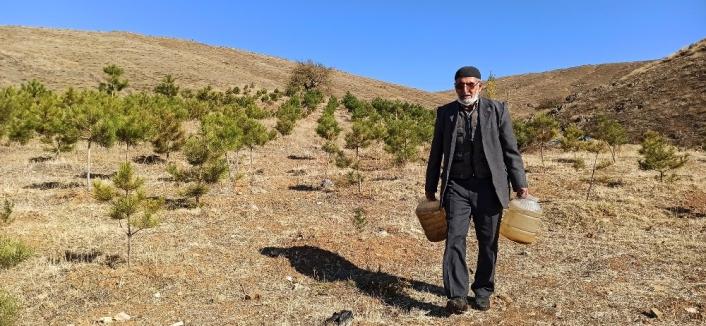 `Orman Dede´, babadan kalma arazisini 11 yılda ormana dönüştürdü