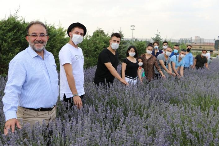 Parasızlıktan lavanta üretimine başlayan belediye 2 milyon lira gelir bekliyor