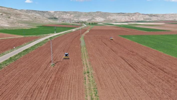 Patates üretiminde ilk sıralarda olan Sivas´ta tohumlar toprakla buluştu