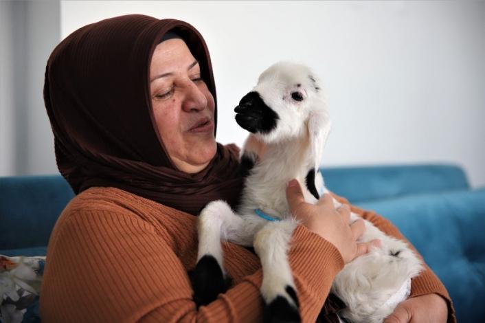 Sahiplendiği kuzu, hem evinin neşesi, hem de terapisi oldu