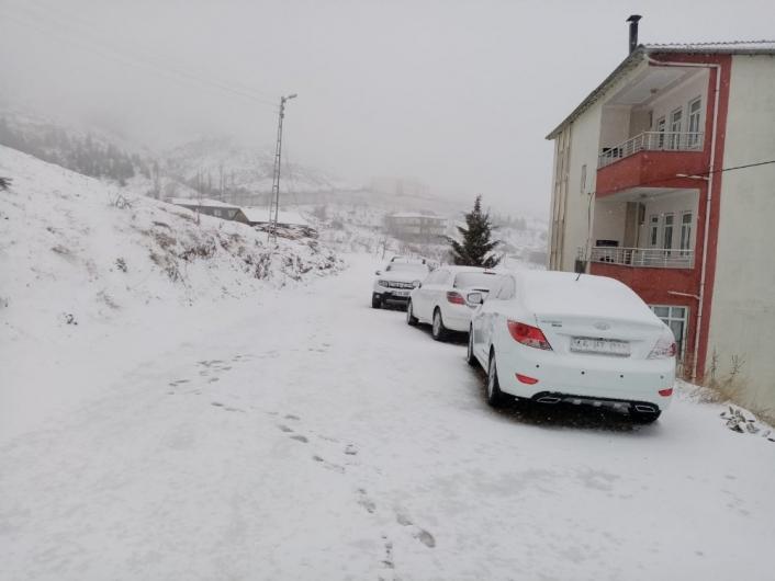 Sincik ilçesi kar yağışına teslim oldu