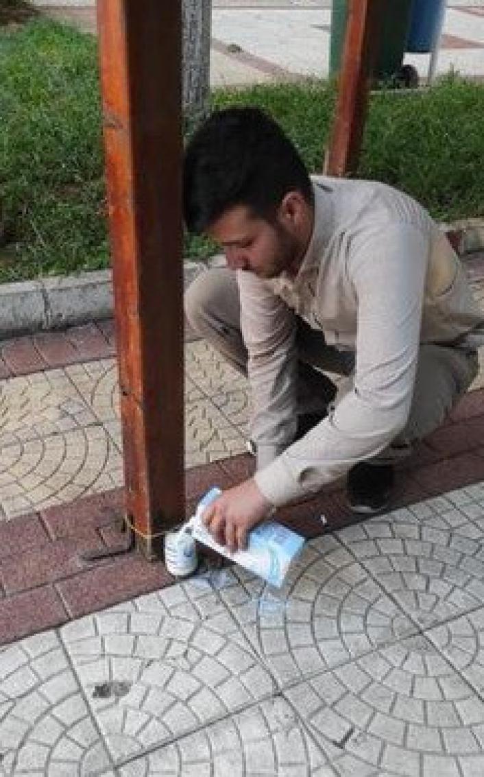 Sokaklara hayvanlar için süt bırakıldı