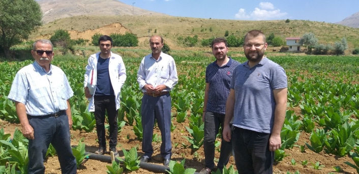 Tarımda viral hastalıklarla mücadele araştırması yapıldı